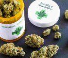 Medical marijuana finally legal in Peru