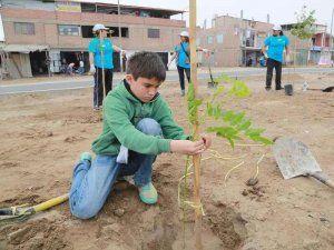 "Planting trees in Lima as part of the ""Planta un arbol nace un vida"" campaign; photo: serpar"