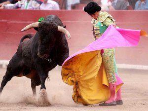 Bullfighting in Peru